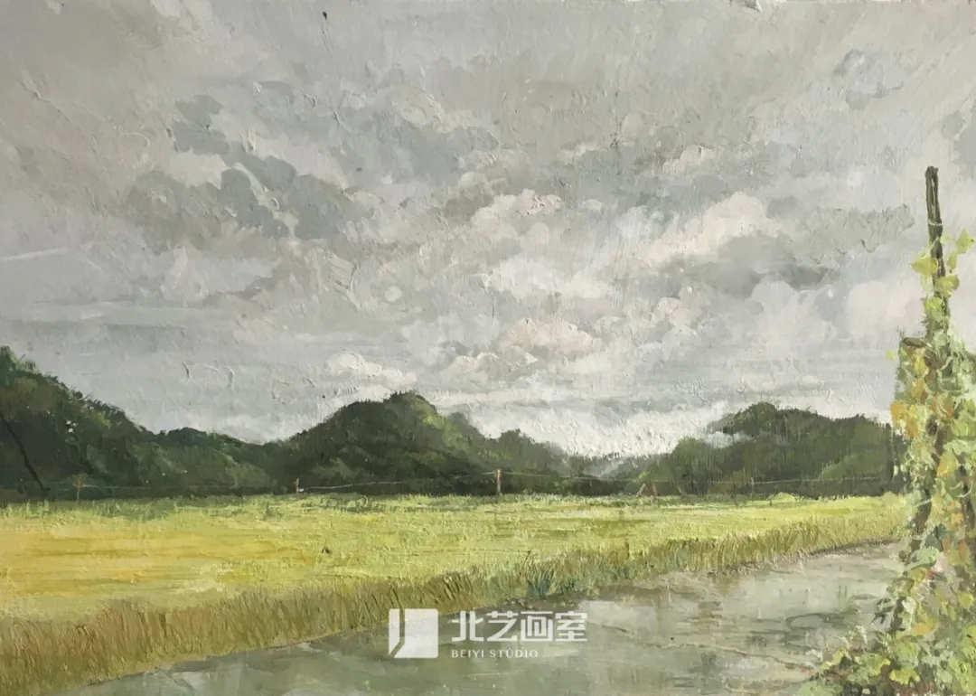 色彩风景作品赏析——稻田、小河、群山